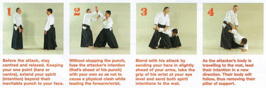 No-Bull Aikido Pic1
