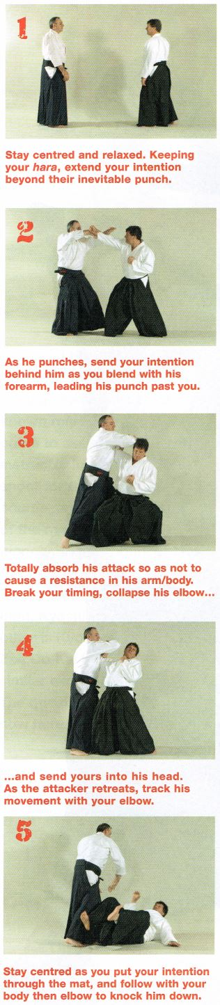 No-Bull Aikido Pic3