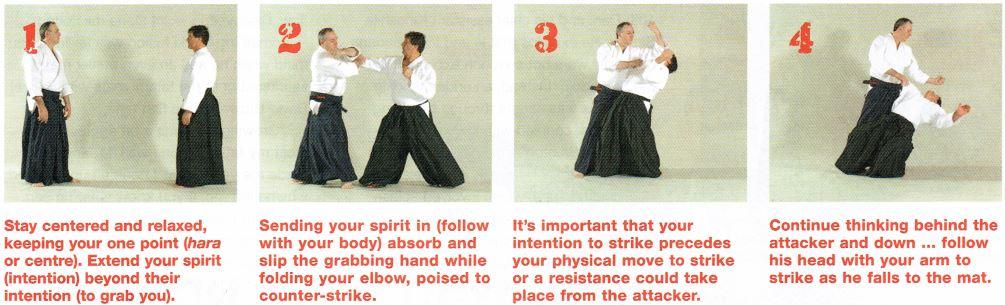 No-Bull Aikido pic4