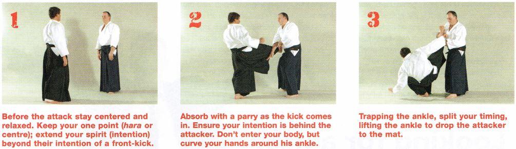 No-Bull Aikido pic7