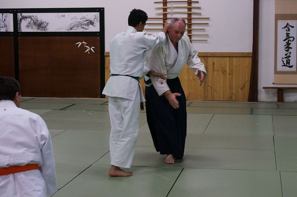 Training with Sensei